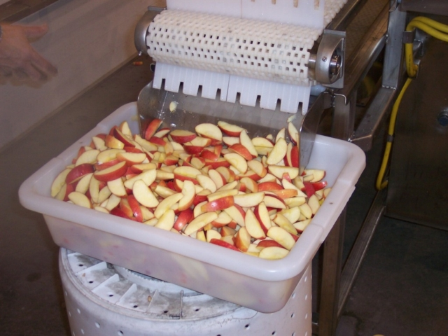 Apple Treatment System & Fines Removal