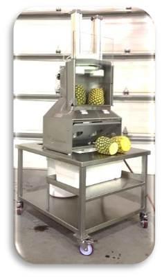 Dual Pineapple Spear & Tube Cutter