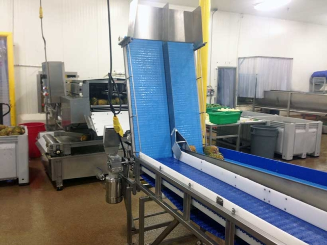 Easy Lift Access Conveyor